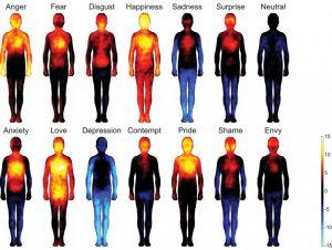 effect van gevoelens in je lichaam