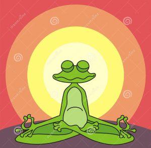Blog 2_het-mediteren-van-kikker-31842134